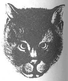 Любимый кот царя Алексея